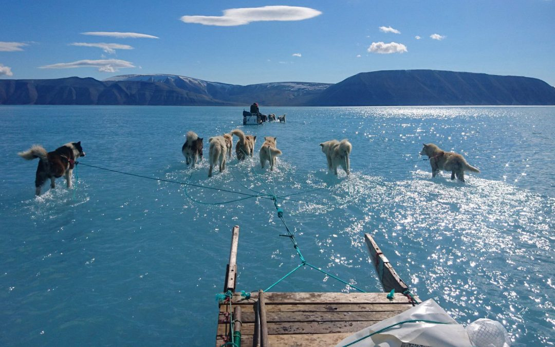 In Greenland's Melting Ice, A Warning on Hard Climate Choices